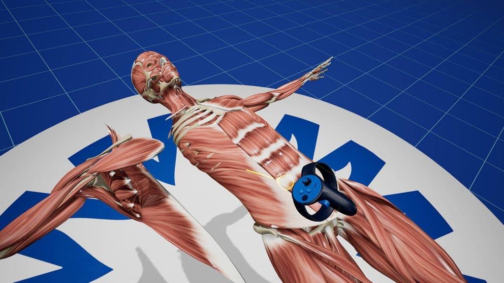 vr anatomie training UMC Utrecht